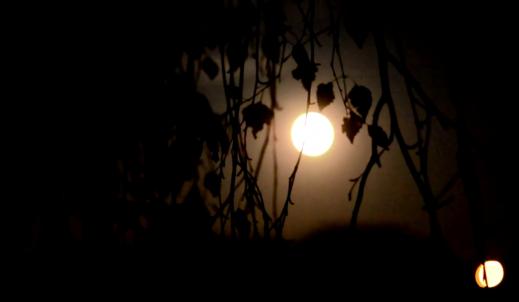 """""""A noc była tym, czym noc powinna być"""""""