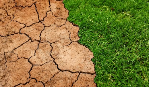 Lokalna zmiana klimatu