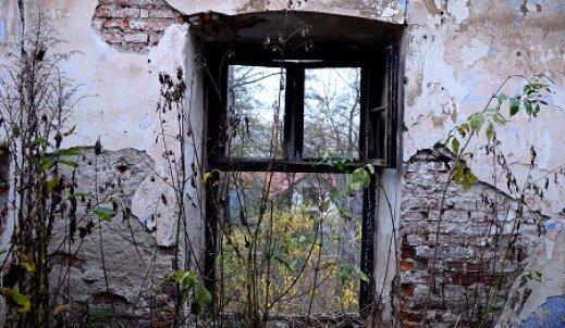 Okno na świat.