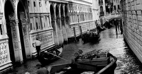 Venezia '14