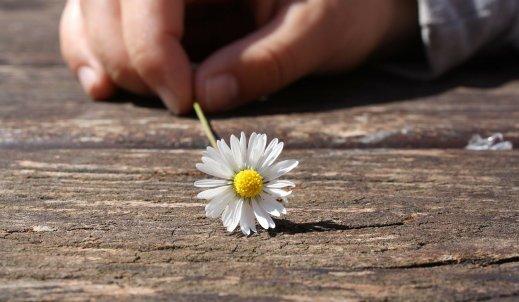 Wdzięczność – towar deficytowy