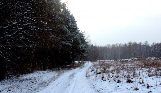 Piękna zima do nas wróciła!