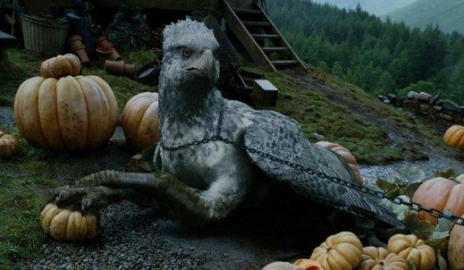 """Harry Potter wraca: Bez """"Chłopca, który przeżył!"""""""