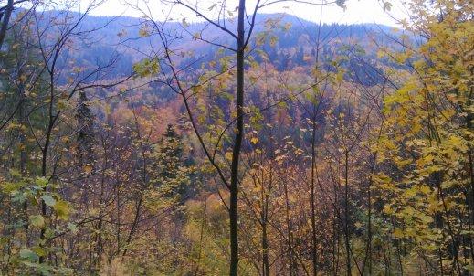 Kolory jesieni w Górach Bardzkich