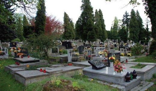 """Dlaczego odwiedzamy groby bliskich? Co daje to """"spotkanie"""" żywym?"""
