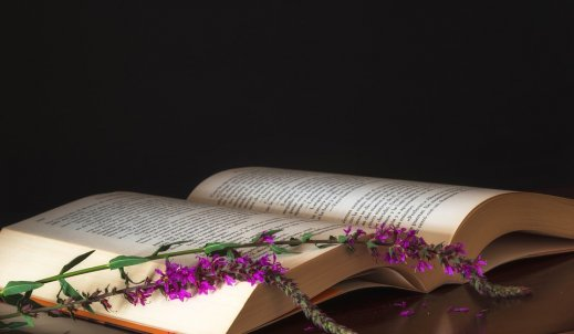 Każdy może napisać książkę, bo wszyscy jesteśmy poetami