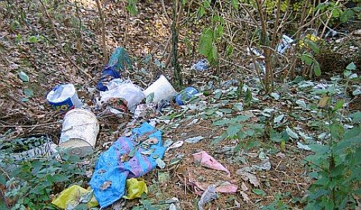 Leśne góry śmieci