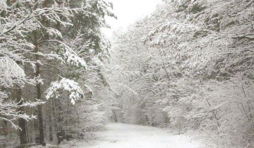 Czy zima na Śląsku znowu zawiedzie?