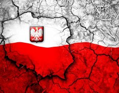 243624_grafika_polska_godlo_mapa_flaga.jpg