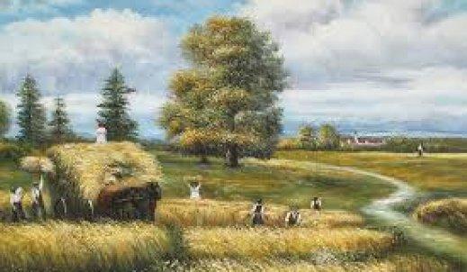 Moja wieś