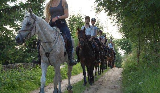 Ile koni tyle charakterów…