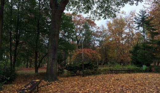 Barwy jesieni w obiektywie