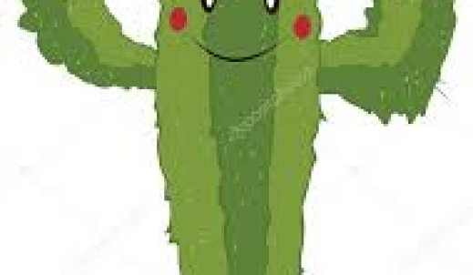 Wrażliwy kaktus