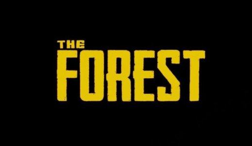 Czy warto grać w the forest?