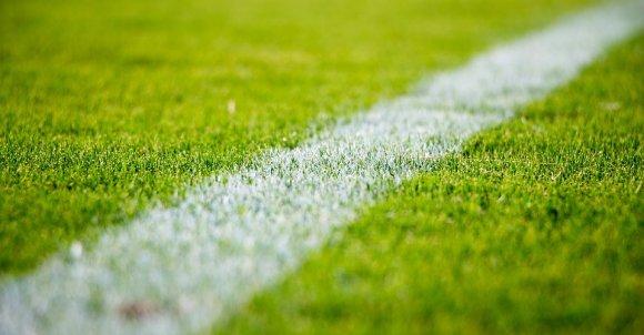 grass2616911_960_720.jpg