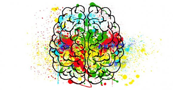 brain2062048_960_720.jpg