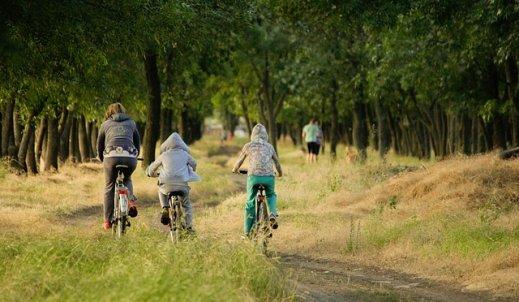 Moja rodzina i rower