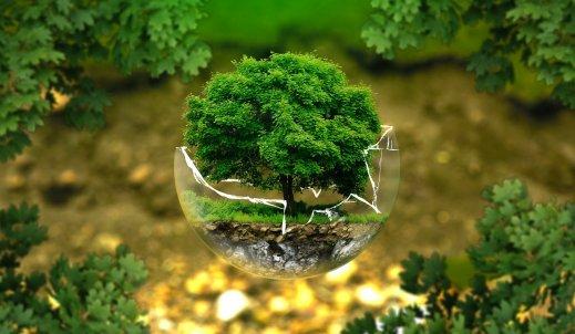 Działajmy razem – w trosce o naszą planetę