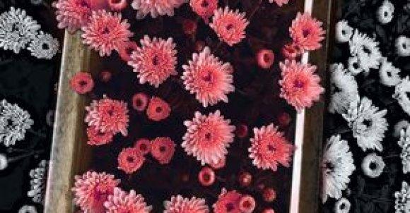Do zrobienia takiego zdjęcia potrzebujesz:  -Ramkę na zdjęcia -Aparat lub telefon  Ustaw ramkę na jednolitym tle. W edycji wytnij samą ramkę i wklej na zdjęcie z kwiatami. Dodaj czarno biały filtr, wymaż kwiaty i ramkę żeby filtra nie było na nich.  Teraz tylko przerób zdjęcie w jakiejś aplikacji i gotowe!